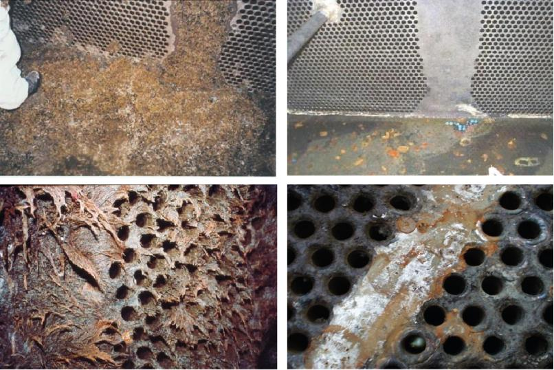 Efficient biofouling control biofouling monitors